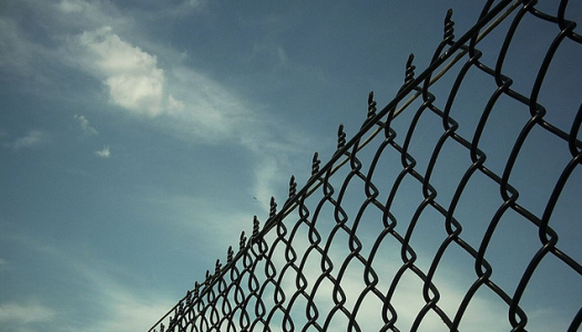 """Considering the prison problem in Marian Botsford Fraser's """"Life on the Instalment Plan"""""""