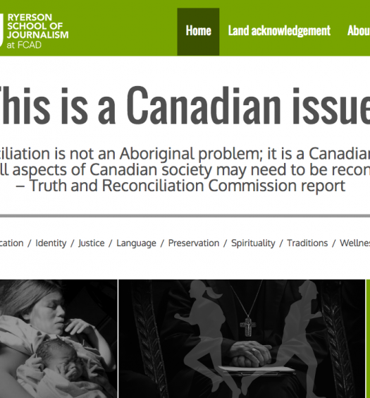 This is a Canadian Issue, a microsite created by Ryerson Masters students as part of their digital reporting class. Screenshot by J-Source.