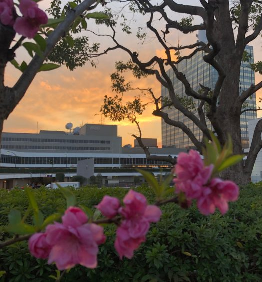 Exterior of NHK office building in Tokyo
