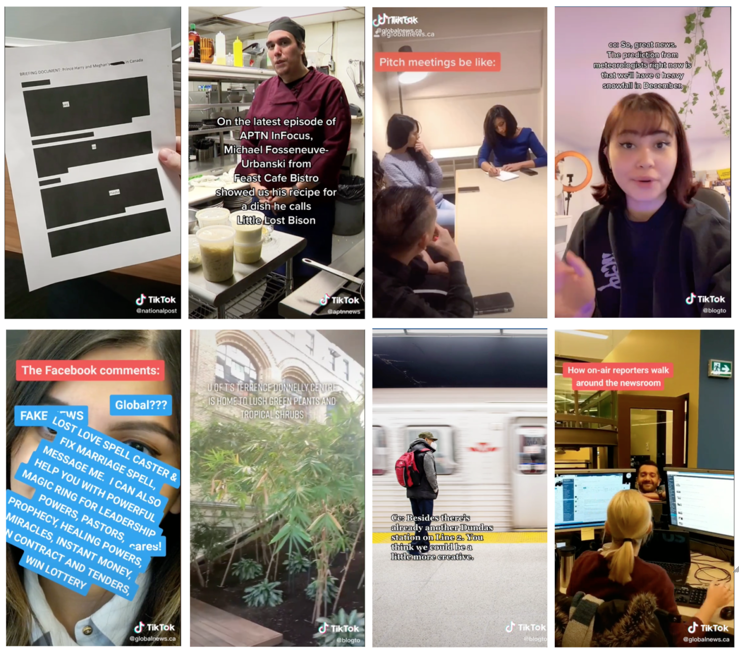 Collage of 8 TikTok screenshots from BlogTo, Global News and APTN