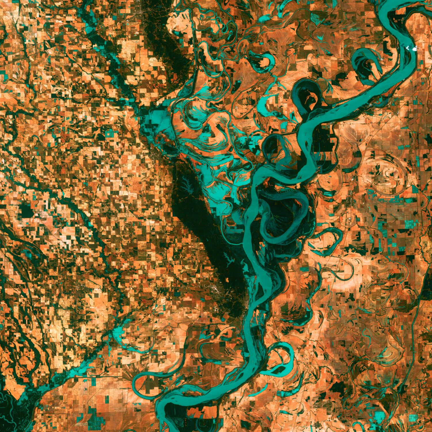 """Small, blocky shapes of towns, fields, and pastures surround the graceful swirls and whorls of the Mississippi River. Countless oxbow lakes and cutoffs accompany the meandering river south of Memphis, Tennessee, on the border between Arkansas and Mississippi, USA. The """"mighty Mississippi"""" is the largest river system in North America."""